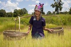 Alte asiatische Frau, Akha Stockfotos