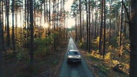 Alte Autofahrten im Wald stock footage