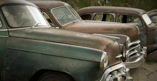 Alte Autos, die am Junkyard verrosten Stockbild