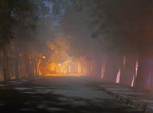 Alte Bäume entlang Gasse nachts Stockfoto
