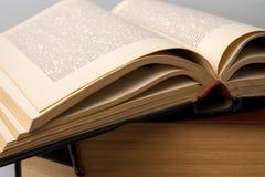 Alte Bücher Lizenzfreie Stockfotografie