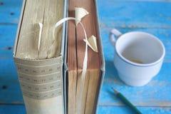 Alte Bücher, Abschluss herauf Tasse Kaffee und Bleistift, Stockfotos