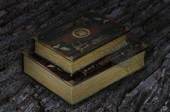 Alte Bücher auf dem Barke tree's Hintergrund Lizenzfreie Stockfotografie