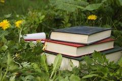 Alte Bücher auf dem Gras Stockbilder