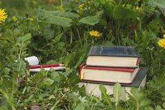 Alte Bücher auf dem Gras Stockbild