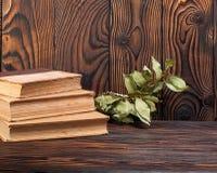 Alte Bücher auf einem hölzernen Hintergrund Lizenzfreie Stockbilder