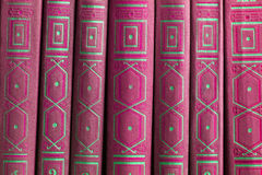 Alte Bücher auf einem hölzernen Regal Lizenzfreie Stockbilder