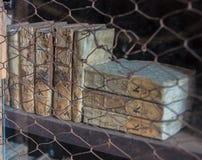 Alte Bücher auf einem Regal Lizenzfreie Stockbilder