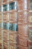 Alte Bücher auf einem Regal Lizenzfreies Stockbild