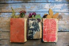 Alte Bücher auf hölzernem Hintergrund Stockfotos