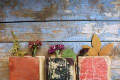 Alte Bücher auf hölzernem Hintergrund Stockbilder