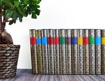 Alte Bücher auf rustikalem Holztisch Lizenzfreie Stockbilder