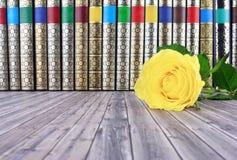 Alte Bücher auf rustikalem Holztisch Lizenzfreies Stockbild