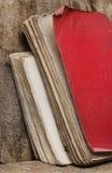 Alte Bücher benutzt Lizenzfreie Stockfotos
