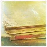 Alte Bücher in den warmen Farben Stockbilder