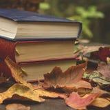 Alte Bücher in der Herbstszene Stockbilder