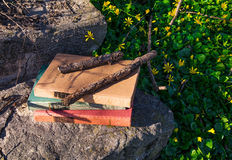 Alte Bücher in der Natur Lizenzfreie Stockfotografie