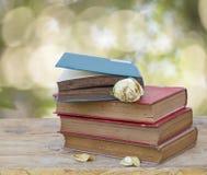 Alte Bücher der Weinlese auf hölzerner Plattformtabelle Stockfoto