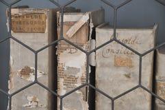 Alte Bücher in einer Bibliothek Lizenzfreies Stockfoto