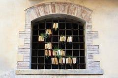Alte Bücher im Gitterfenster mit gekeimten Anlagen Lizenzfreie Stockfotografie