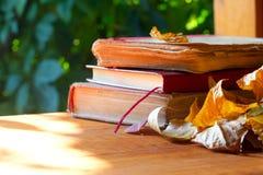 Alte Bücher im Herbstlaub auf hölzernem Hintergrund Lizenzfreie Stockfotos