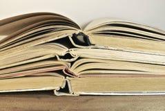 Alte Bücher im Weinleseton Stockbilder