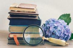 Alte Bücher mit Blumen und Spiegel Stockfoto