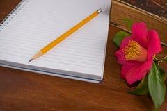 Alte Bücher mit romantischen rosa Blumen auf hölzernem Lizenzfreie Stockbilder