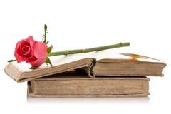 Alte Bücher mit Rosarose Stockbilder