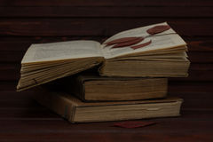 Alte Bücher mit Rotem trocknen Blätter Lizenzfreies Stockbild