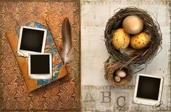 Alte Bücher mit Vogelnestern auf grunge Lizenzfreie Stockbilder