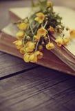 Alte Bücher und Butterblumeen auf einem Holztisch Stockfotografie