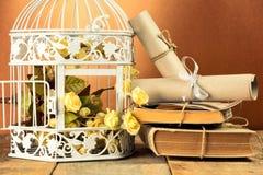 Alte Bücher und dekorativer Käfig Stockbild