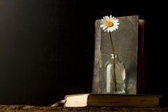 Alte Bücher und Gänseblümchen Stockbilder