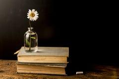 Alte Bücher und Gänseblümchen in einer Glasflasche Stockfotos