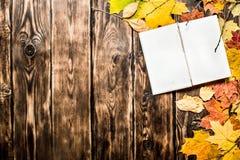 Alte Bücher und Herbstlaub Lizenzfreie Stockbilder
