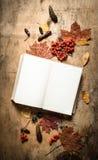 Alte Bücher und Herbstlaub Lizenzfreie Stockfotos