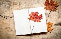 Alte Bücher und Herbstlaub Stockbilder