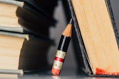 Alte Bücher und kleiner perfekter Bleistift Lizenzfreies Stockfoto