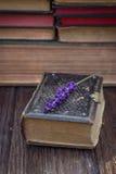 Alte Bücher und Lavendel Lizenzfreies Stockfoto