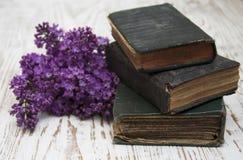 Alte Bücher und lila Niederlassung Lizenzfreie Stockfotografie