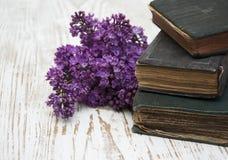 Alte Bücher und lila Niederlassung Lizenzfreies Stockfoto