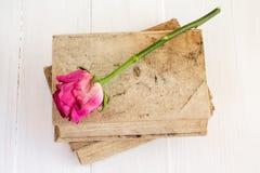 Alte Bücher und trocknen Rosafarbenes Stockbild