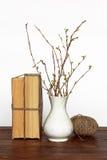 Alte Bücher, Vase mit den Zweigen und Thread Stockfoto
