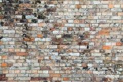 Alte Backsteinmauer 3 Lizenzfreie Stockbilder