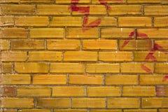 Alte Backsteinmauer Lizenzfreies Stockbild