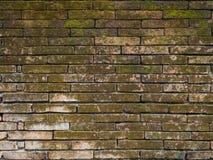 Alte Backsteinmauer Stockfotografie