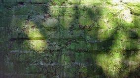 Alte Backsteinmauer Beschaffenheit mit grüner Farbe Lizenzfreies Stockfoto