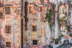 Alte Backsteinmauer der roten Weinlese mit Fenstern und grünem Efeu Stockfotografie