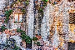 Alte Backsteinmauer der roten Weinlese mit Fenstern und grünem Efeu Lizenzfreie Stockfotos